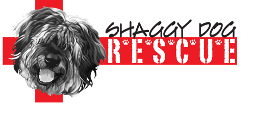 Houston Shaggy Dog Rescue